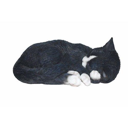 Vivid  Arts plant pals sleeping black and white cat