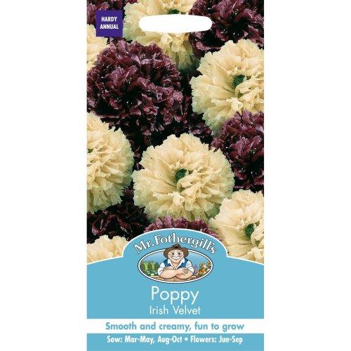 Mr Fothergills - Pictorial Packet - Flower - Poppy Irish Velvet - 750 Seeds