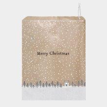 2 Pack Christmas Small Gift Bag 26.5cm x 21.5cm x 10cm Santa