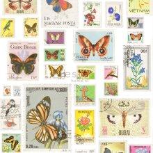 non-woven wallpaper XXL stamps