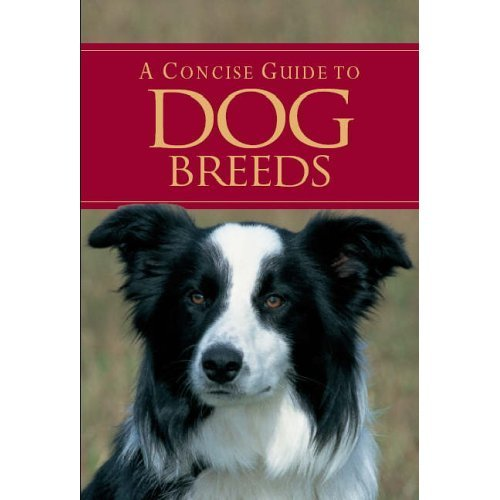 A Concise Guide to Dog Breeds