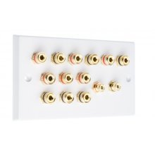 White 6.2 Speaker Wall Plate 12 Terminals + 2 RCA Phono Sockets - Two Gang - No Soldering Required