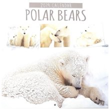 2019 Polar Bears Square Wall Calendar Christmas Birthday Gift Antarctic Life