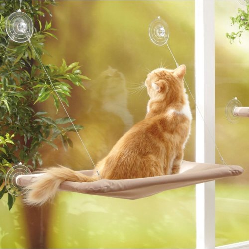 Cat Bed Window Mounted Pet Conservatory Wall Hammock Perch Cushion