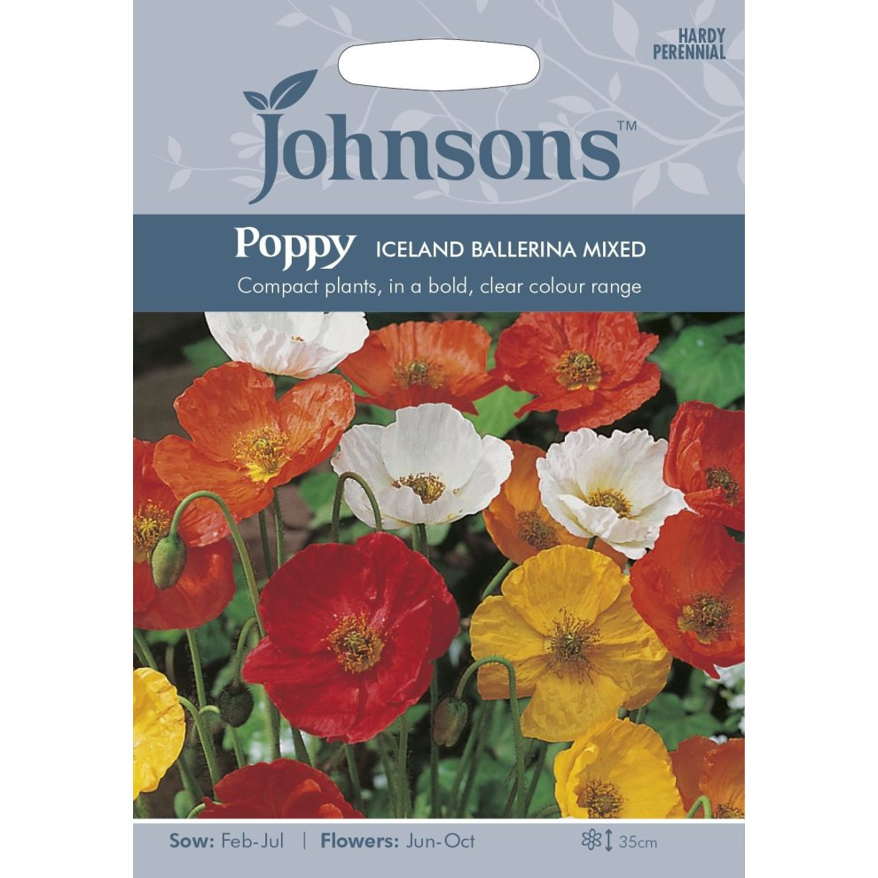 Flower Johnsons Pictorial Pack Evening Primrose Silky Orchid 250 Seeds