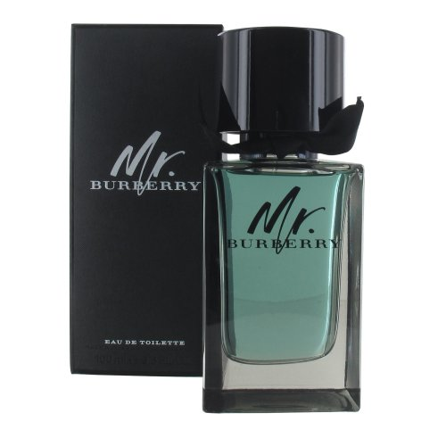 Burberry Mr Burberry 100ml Eau de Toilette Spray