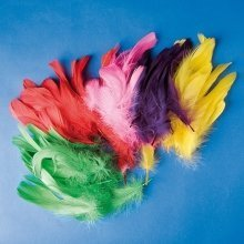 Pbx2470041 - Playbox - Feathers (various Colours) - 200 Pcs