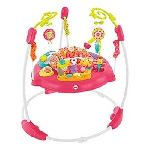 Fisher-Price Petals Jumperoo (Pink)