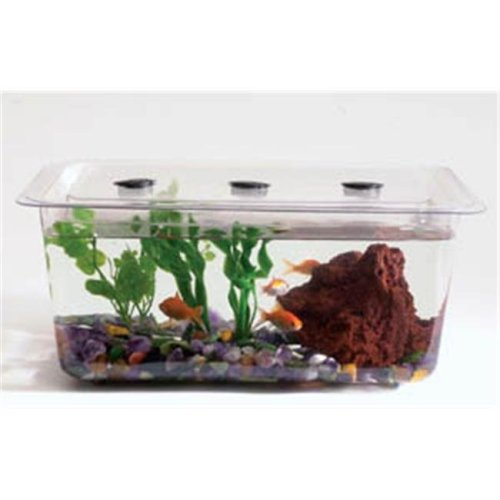 Hubbard Scientific 9434 1 Gal Study Aquaria Terraria Tank Cover