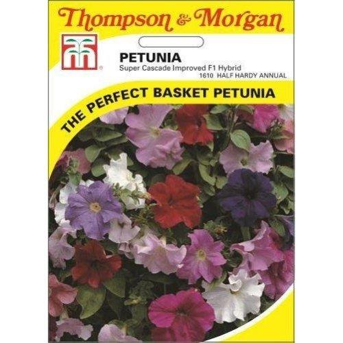 Thompson & Morgan - Flowers - Petunia Super Cascade Improved Mixed F1 Hybrid - 90 Seed