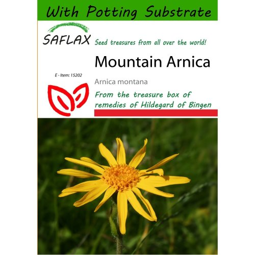 Saflax  - Mountain Arnica - Arnica Montana - 40 Seeds - with Potting Substrate for Better Cultivation