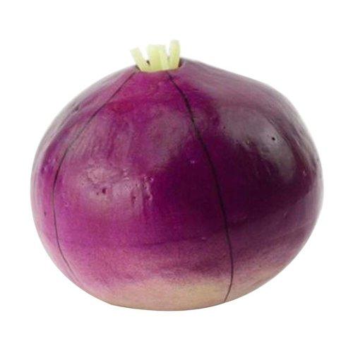 Set of 5 Artificial Vegetables Lifelike Vegetables Faux Vegetables, Onion