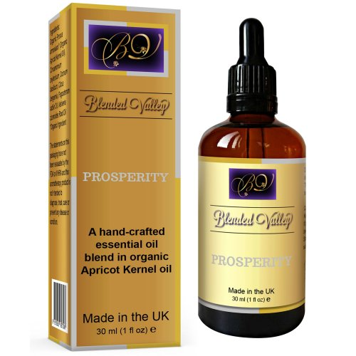 Prosperity Oil - Essential Oils of Patchouli, Cinnamon, Bergamot in Apricot Kernel Oil. For Reed Diffuser, Incense Burner or Crystals, Aromatherapy...