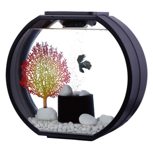 Fish R Fun Deco O Fish Tank | Black LED Aquarium 20L