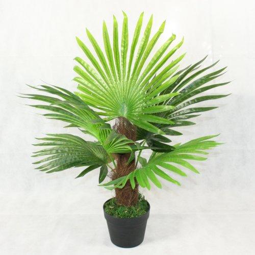 Artificial Fan Palm Phoenix Tree Home Office Interior Decoration