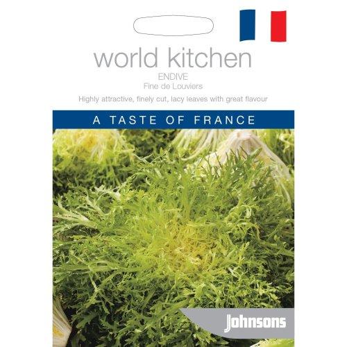 Johnsons World Kitchen Vegetable - Pictorial Pack - Endive Fine de Louviers - 1000 Seeds