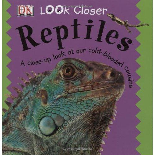 Reptiles (Look Closer (Dorling Kindersley Hardcover))
